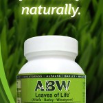 ABW Side Banner Ad_300dpi